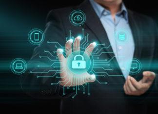 programa- msp -bitdefender - Newsbook - canal - ciberseguridad