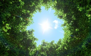 HP Sostenible - Newsbook- informe Impacto sostenible 2020 - Tai Editorial - España